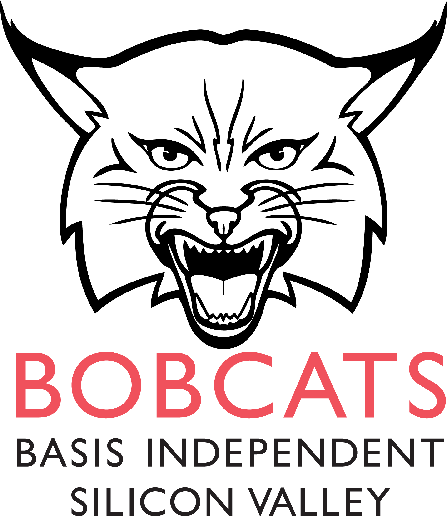 BASIS Independent Silicon Valley
